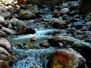 обои Струящийся летний ручей,   среди камней фото