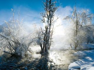 обои Зимний ручей в солнечном свечении фото