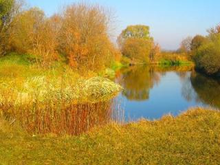 обои Осеннее воспоминание о весне фото