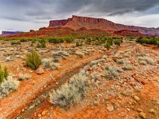 обои Летний ручей в горном каньоне фото