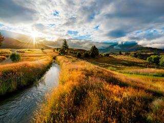 обои Летний ручей на закате,   в золотом поле фото