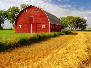обои Красный ангар у скошенного поля фото
