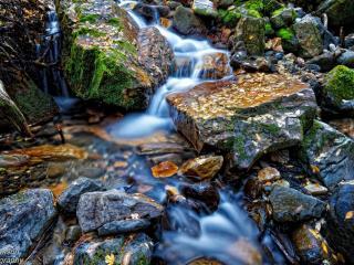 обои Осень у ручья,   мокрые камни и ручей крупным планом фото