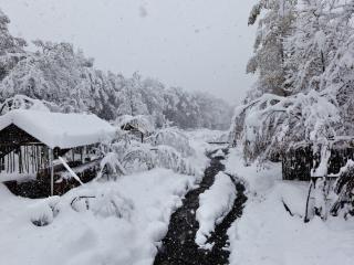 обои Зимний ручей у заснеженной постройки фото