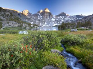 обои Ручей впадающий в горное озеро,   лето в горах фото