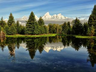 обои для рабочего стола: Глухое озеро окруженное елями