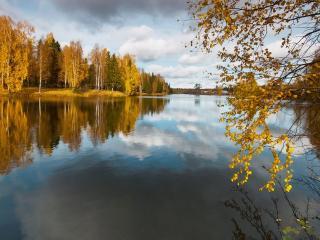 обои Окунулись в осень у озера фото