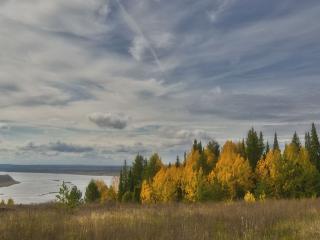 обои Осенний полёт фото