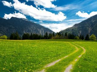 обои Дорога и цветущая зеленая поляна между гор фото