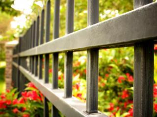 обои Металлическая ограда в цветах фото