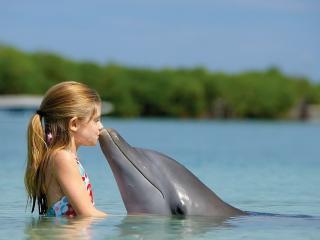 обои Девочка целуется с дельфином фото