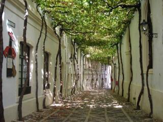 обои Улочка в городе Херес. Испания фото