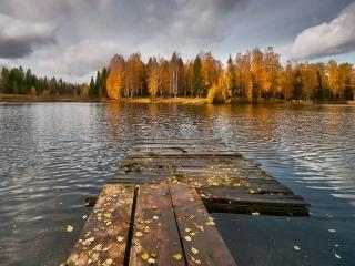 обои Холодная осень на реке фото