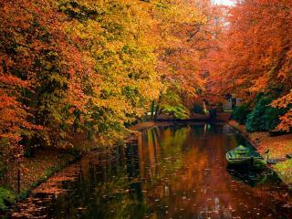 обои Вот она какая…осень на пруду фото