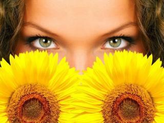 обои Глаза и подсолнухи фото