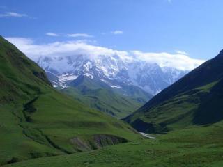 обои Горы в зелени и снегу фото