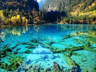 обои Бирюзовое озеро,   Национальный парк Цзючжайгоу,   Китай фото