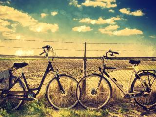обои для рабочего стола: Два велосипеда у сетки