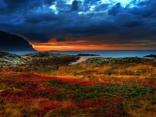 обои Живописный берег океана под тучами фото