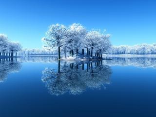 обои Островок поросший деревьями зимой фото
