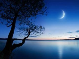 обои Тихий рассвет на озере фото