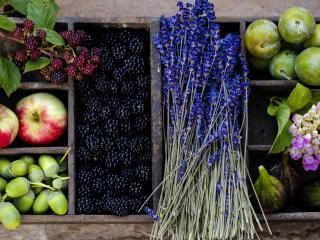 обои Натюрморт - Фрукты ягоды и цветы в коробочке фото