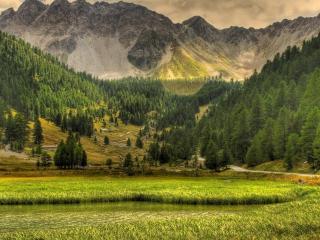 обои Живописная долина перед горой фото