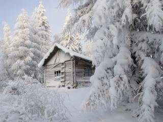 обои для рабочего стола: Заброшенная избушка в зимнем лесу