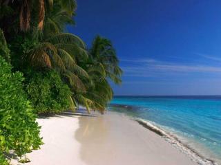 обои Angsana Velavaru - остров в Индийском океане фото