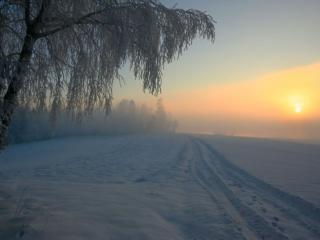 обои Туманный зимний вечер фото
