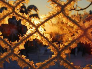 обои Решетка покрытая снежным узором фото