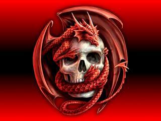 обои Череп в объятиях красного дракрна фото