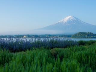 обои Великая гора за озером фото