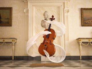 обои для рабочего стола: Невидимый игрок на виолончели