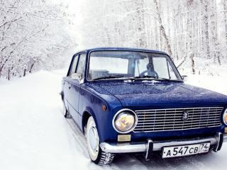 обои Синяя классика в зимнем лесу фото