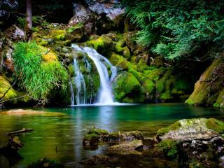 обои Водопад во мшанике фото