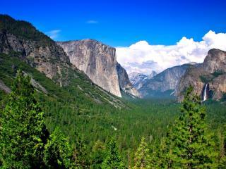 обои Ущелье с водопадом покрытое лесом фото