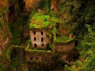 обои Поросший зеленью забытый замок фото