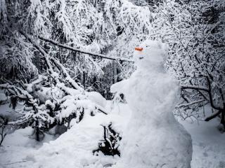 обои Снеговик в зимнем лесу фото