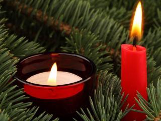 обои Две свечи в еловой хвое фото