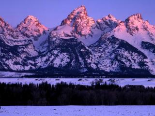 обои Розовый хребет снежной горы фото
