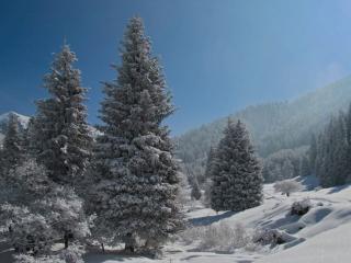 обои Зимний день в горах Алматы фото