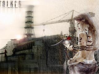 обои Красотка из игры Stalker фото