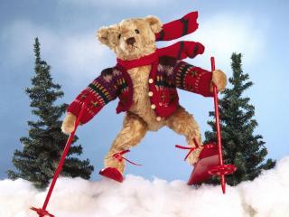 обои Медведь на лыжах фото