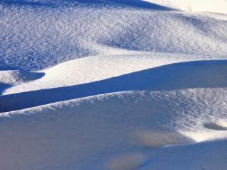 обои Синий пух зимы фото