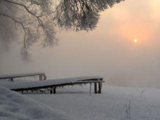 обои Туманное солнце фото