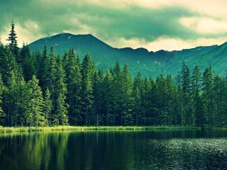 обои Озеро у гор фото