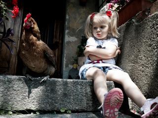 обои Девочка с курицей фото
