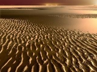 обои Золотые пески фото