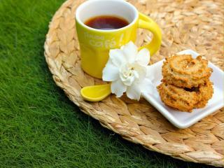 обои Утренний кофе на траве фото